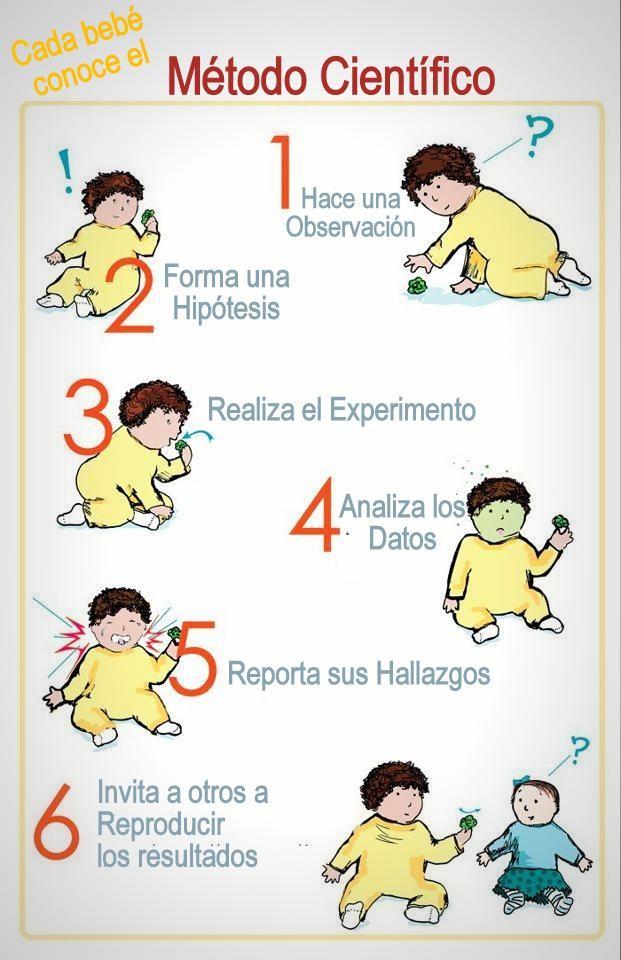 Método científico bebés
